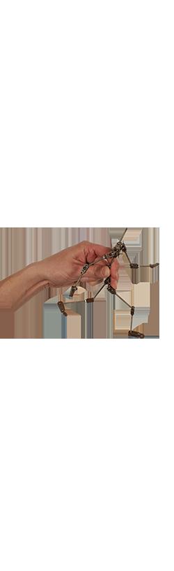 Hand_Armature_001_vert02.png